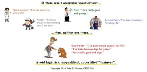 rising star dog training qualifications ws